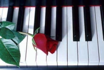 Piano Keyboard with  Rose
